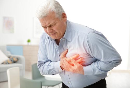 Heart/ Cardiovascular Diseases