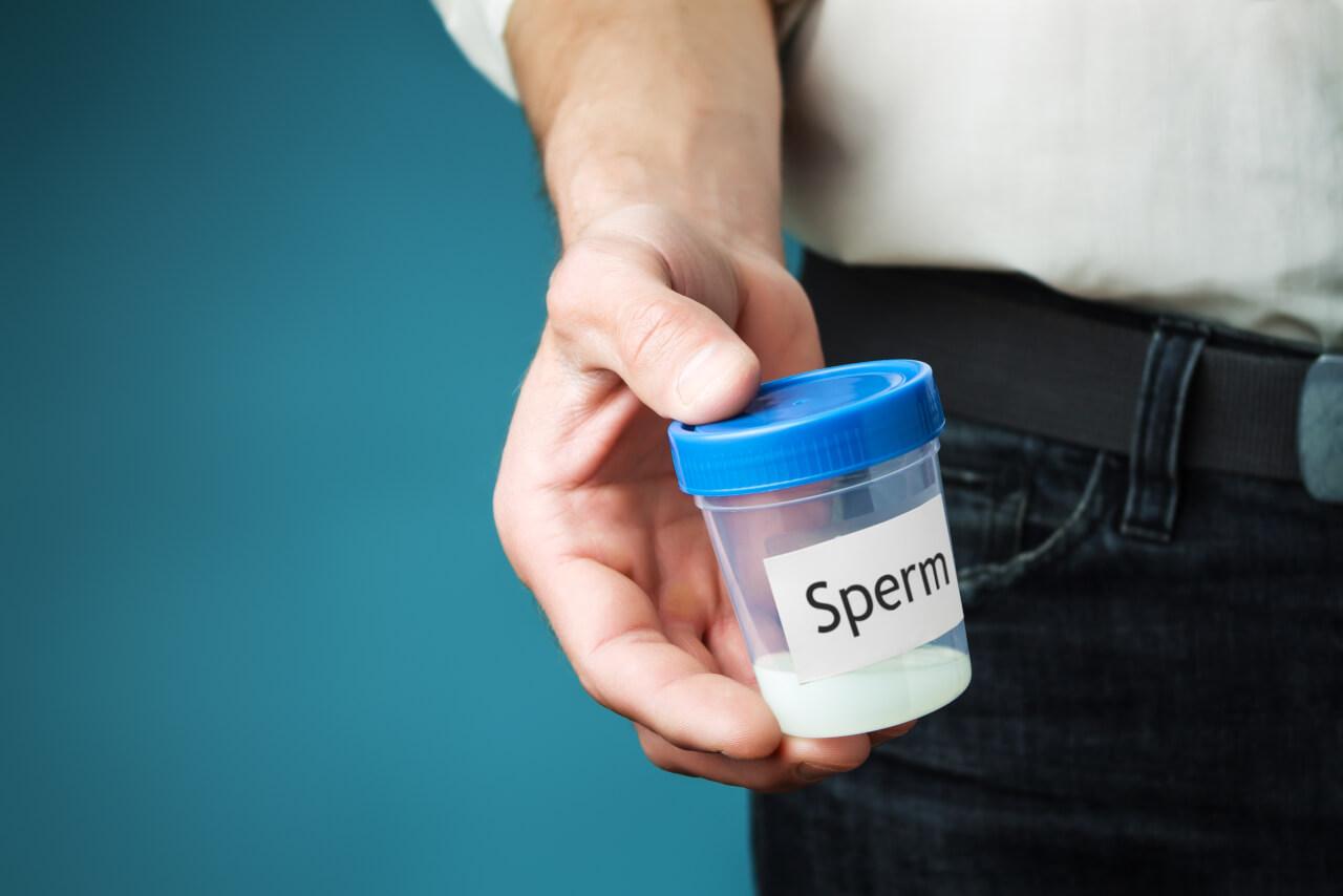 Sperm Donor Process